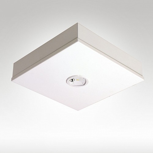 Goldstar LED Surface Mounted D40